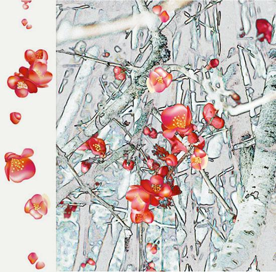 Hawthorn Snow by Lisa Rivas
