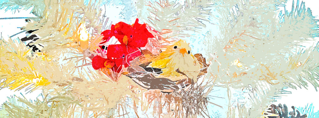 The Little Partridge by ©Lisa Rivas
