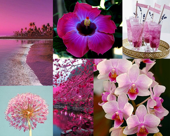 Radiant Orchid mood-board by Lisa Rivas
