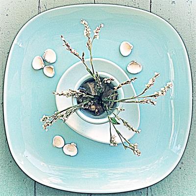 indigo-flowers by LisaRivas